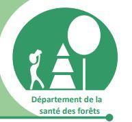 Département Santé des Forêts - Non officiel